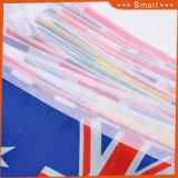 安い卸し売り装飾的で小さく多彩なハングの三角形の長旗ストリングフラグ