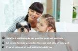 El veterinario recomendó champú del perro y colada del animal doméstico con fórmula orgánica