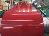 Prepainted (PPGI) гальванизированная стальная катушка для листа толя стального