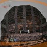 Volle maschinell hergestellte Einschlagfäden schließen preiswerte Perücken kurz (PPG-l-01808)