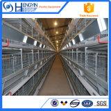 Galvanisierter Huhn-züchtend Rahmen mit dem automatischen Führen
