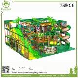 Apparatuur van de Speelplaats van Funlandia de Eigengemaakte Binnen