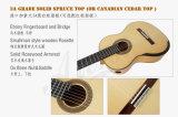 Guitarra de Aiersi Smallman com parte traseira do bordo da flama e lado (SC100SPF)