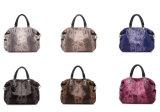 La serpentina di modo stampa il sacchetto di cuoio di Boston delle donne delle borse dell'unità di elaborazione (WDL0894)