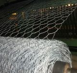 1.0mm PVC Hexagonal Coated Wire Mesh for Dirty