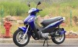2017年の南アメリカの熱い販売5.0kwの電気ガスのオートバイ