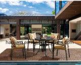 /Rattan extérieur/jeu &Table de présidence de rotin de meubles hôtel de jardin/patio (HS 1502C& HS6102DT)