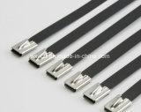 Enduit de PVC attaches de câble en acier robuste