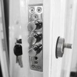 MahagoniHaustür-Sicherheits-Stahl-Tür