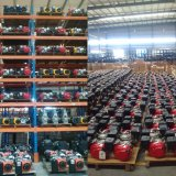 4500W商業エンジンを搭載する専門ガソリン発電機セット