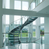 A balaustrada de vidro 12mm do aço inoxidável do Decking moderou claramente/balaustrada geada