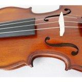 Le violon avec des antiquités de qualité professionnelle de l'épinette sculpté et de l'érable de flamme
