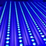 軍事大国RGBW 1000mm 240W LEDの壁の洗濯機