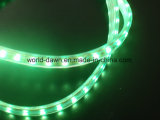 indicatore luminoso della corda del kit LED della bolla di 220V 120V 5m (SMD5050- 60LED)