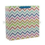 La impresión de color personalizada bolsa de embalaje de papel cartón