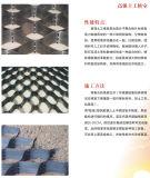 Maagdelijke HDPE Geocell voor de Bouw van het Materiaal van de Versterking