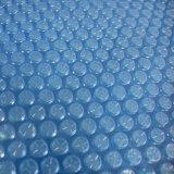 Fenlin над крышкой бассеина земного пузыря плавательного бассеина пластичной