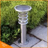 Luz solar al aire libre del césped del jardín