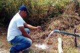 Edelstahl 304 Gleichstrom-schwanzloser Bewegungssolarwasser-Pumpe für die Landwirtschaft