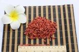 2017 새로운 작물에 의하여 말리는 Goji 장과 또는 Wolfberry 또는 서양모과 또는 Lycium Barbarum