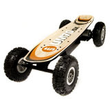 Samsung Lithium Battery Electric Skateboard Kit Motor Battery Clouded