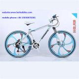 Bici de montaña barata del carbón de la alta calidad