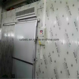 Piccola e cella frigorifera di taglia media dell'unità di elaborazione