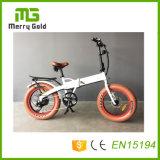 Малый электрический Bike складывая Bikes e с спрятанным типом складным Ebikes батареи миниым