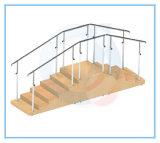 De Ladder van de Opleiding van de Apparatuur van de rehabilitatie voor het Lopen en de Opleiding van de Gang