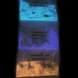 Lueur de poudre de phosphore de ciel de couleur lumineuse de bleu et de couleur verte dans l'enduit photoluminescent foncé de la poussière de pigment luminescent de poudre