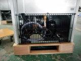 Raffreddamento ad aria verticale congelatore del portello due di vetro per l'hotel, ristorante, uso del self-service