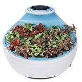 Am: Очиститель воздуха Микро--Пущи 10 домочадцев экологический с отрицательными ионами, фильтром HEPA и активированным углем Mf-S-8700