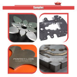 200W 300W 500W 1000W 2000W 섬유 금속 Laser 절단기