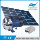 72V 태양 DC 수도 펌프, 1HP 지상 농장 관개 수도 펌프를 갈채를 보낸다
