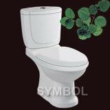 WC уборного (SS-TT2615)
