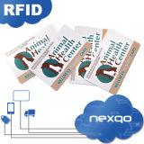 Carte en plastique chaude de cadeau de PVC de taille normale d'impression offset de couleur de la vente quatre