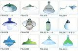 Фарфор эмаль цвет освещения (FSLGC1-23)