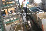 126pcs/128 pcs/132pcs/143pcs/205pcs/210pcs en acier inoxydable de nouvelle conception de la vaisselle de la vaisselle de la Coutellerie (CW-C4001)