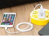 Carregador rápido esperto do cabo do USB para Apple com aprovações