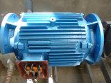 高く効率的なPmの同期電動機か発電機90-200kw