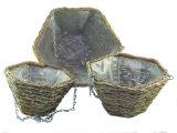 Natürliche Reisig-Kugel-hängender Korb mit der großen Seite, die Löcher pflanzt