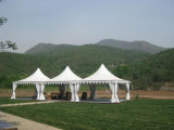 Expandable Top Quality Stylish Peaked Garden Pagoda Marquee Tent