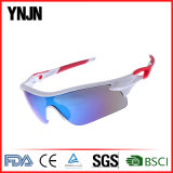 Fabricant Outdoor UV400 Sport Hommes Lunettes de soleil 2017 (YJ-A0290)