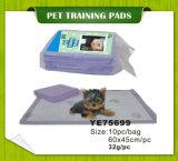 مستهلكة كلب جرو محبوب [بوتّي] تدريب كتل