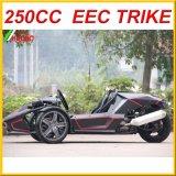 250cc Ztr Roadster com Ec aprovado