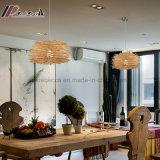 Modernes kundenspezifisches Vogel-natürliches Rattan-hängendes Licht für Balkon