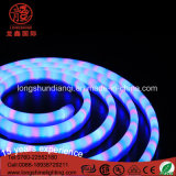 Lâmpada Long Life RGB DC12V à prova d'água de néon com ce RoHS