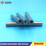 A perfuração com rosca interna de carboneto para tornos de barra de ferramentas
