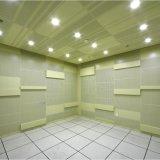 El panel de aluminio perforado del diseño de la manera para el techo y pared decorativa