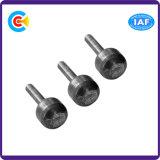 Los tornillos de presión planchan el Pin principal cilíndrico no estándar de la cola del hexágono